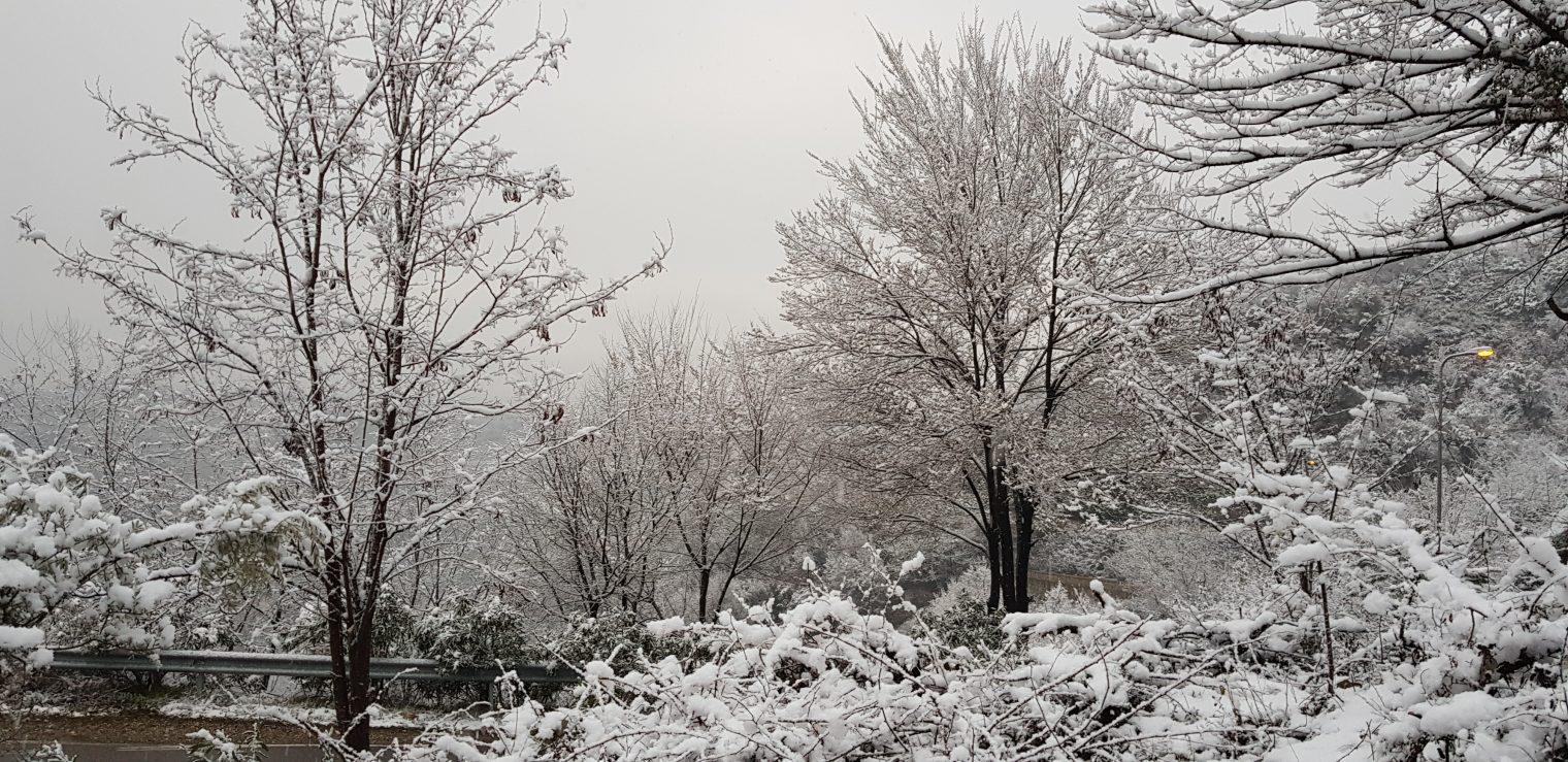 Dimër në Petrelë